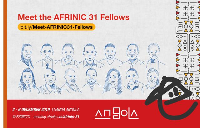 AFRINIC-31 Fellows