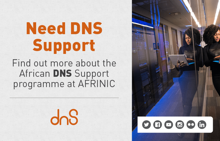 African DNS support programme (AfDSP)